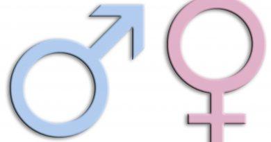 Gender-Mainstreaming – ein trojanisches Pferd